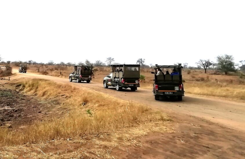 The life of a Safari Guide in Africa